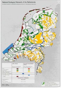 dutch ecological network